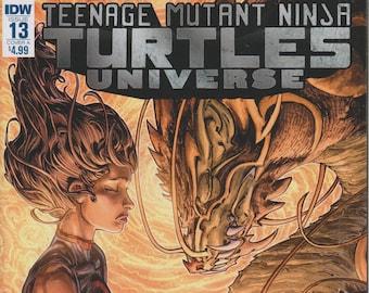 IDW August 2017 Issue 13 Cover A Teenage Mutant Ninja Turtles Universe Karai's Path (Comic: Teenage Mutant Ninja Turtles)  2017