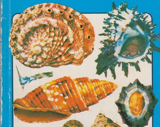 Spotter's Guide to Shells