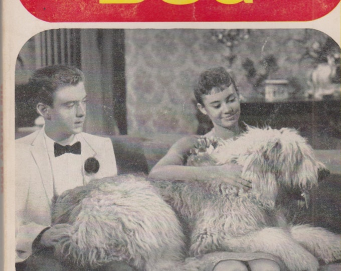 The Shaggy Dog  (Vintage Disney/Scholastic Book TX 1111) (Paperback: Children's Chapter Book) 1967 First Printing