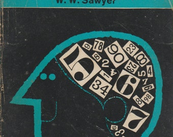Mathematician's Delight by W W Sawyer 1969
