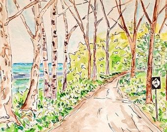 Tunnel of Trees, M119, Original Watercolor, Michigan Art