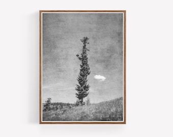 Rustic Black and White Instant Download Print