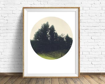 "landscape wall art, instant download printable art, wall art printables, download prints, large art, large wall art prints - ""Firmly Rooted"""