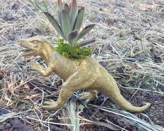 T-Rex planter-short