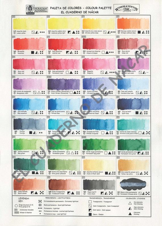 watercolor palette watercolor digital download color wheel etsy