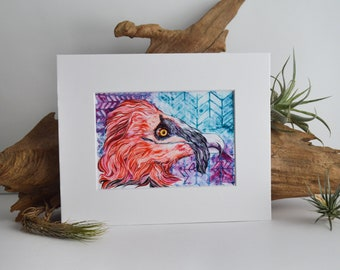 Bearded Vulture Matted Fine Art Print - Archival Ink, Acid Free - For 8x10 Frame