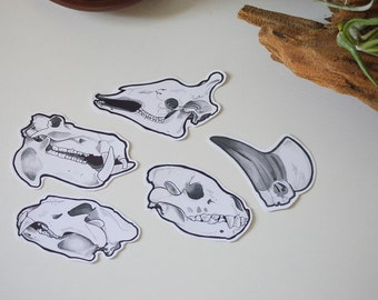 African Animals // Skull Stickers // Set of 5