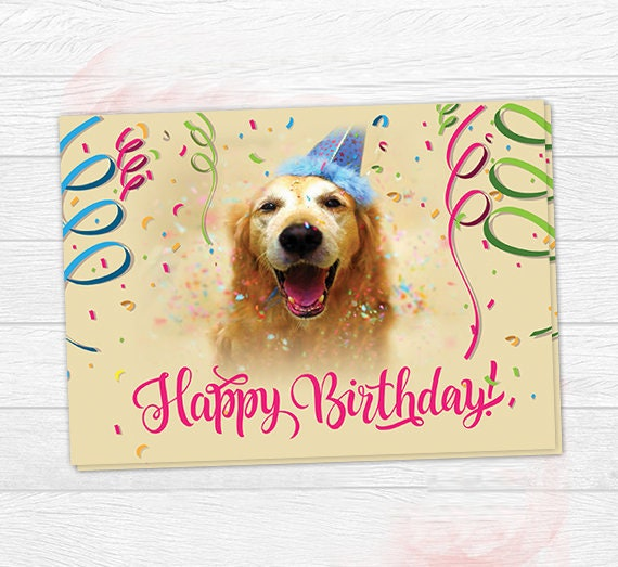 Dog Birthday Card Colorful