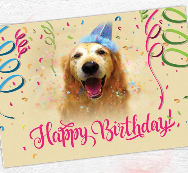 Dog Birthday Card Colorful