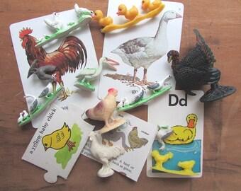 Toy Chicks Ducks and Geese Flashcards Vintage Paper Ephemera