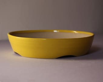 Yellow bonsai pot
