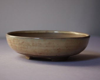 Shallow literati style bonsai pot in a speckled beige gloss glaze
