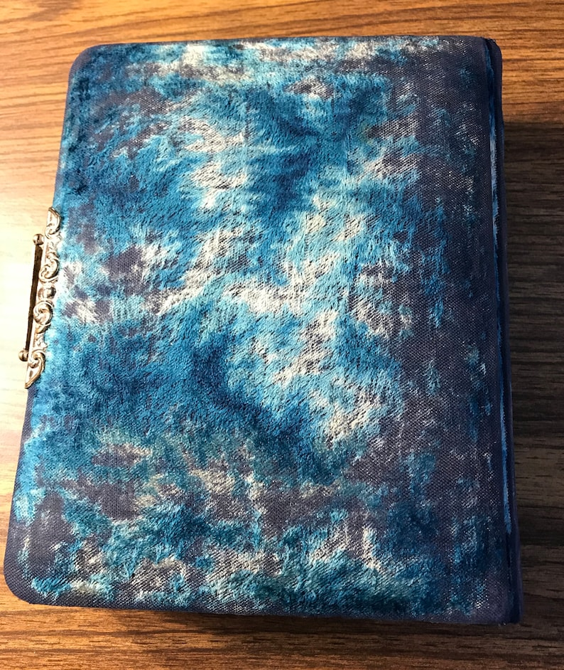 Stunning Molded Celluloid Photo Photograph Album 1890/'s with Pictures Art Noveau  #390
