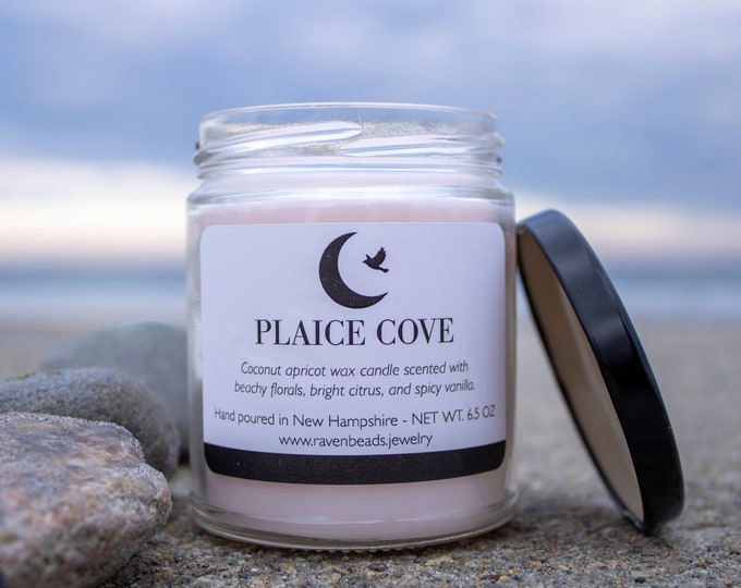 PLAICE COVE: beachy florals, bright citrus, and spicy vanilla scented candle