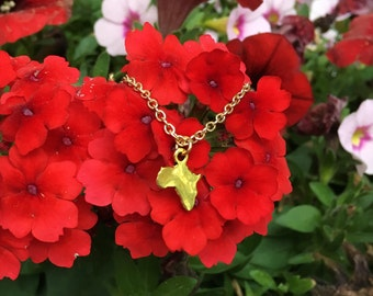 AFRICA: delicate gold africa necklace