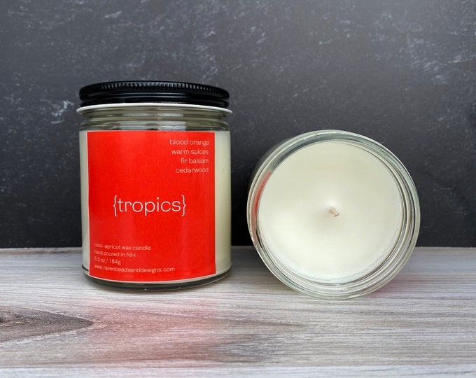 TROPICS: blood orange, warm spices, fir balsam, and cedarwood scented candle