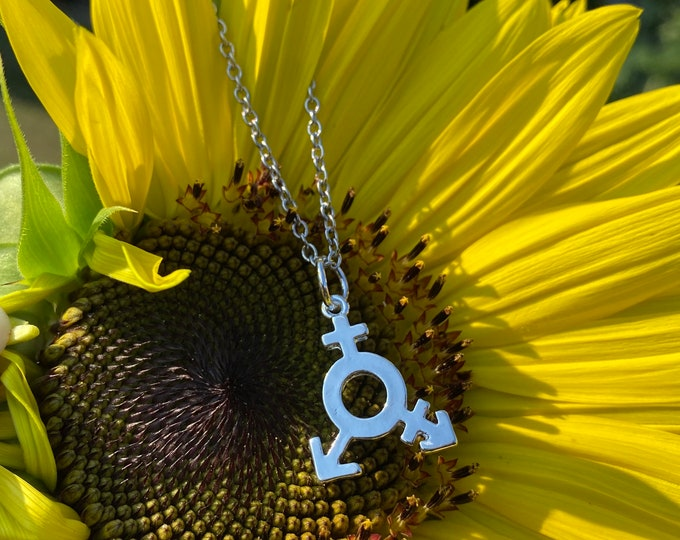PRIDE: silver transgender pride necklace