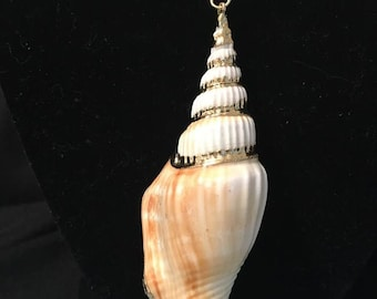 seashell with gold accents/necklace