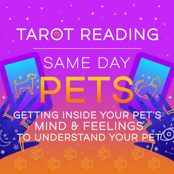 Pets-Understanding Your Pet-Tarot Reading-Same Day Tarot Reading