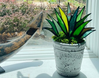 """Stained Glass """"Royal"""" Agave Aloe Plant in Shabby Chic Weathered Stone French Le Jardinier 