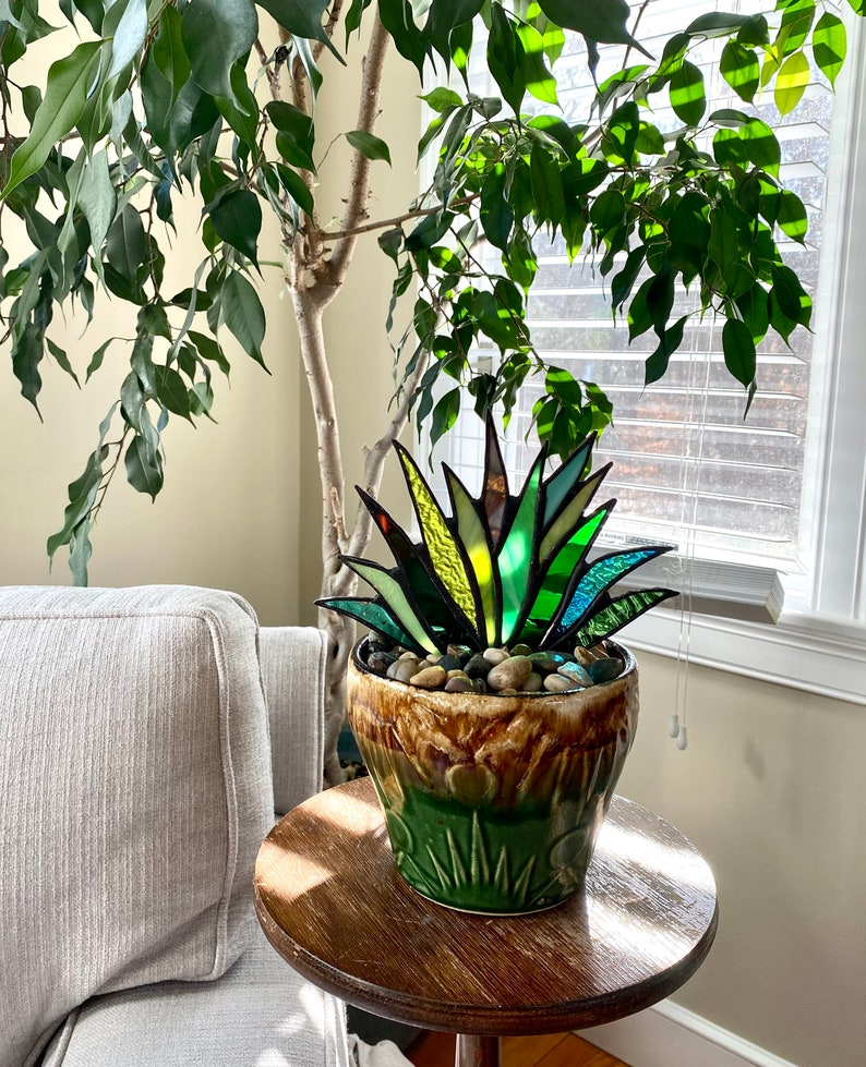 Spectacular Stained Glass Agave Aloe Potted Plant in Roseville image 0