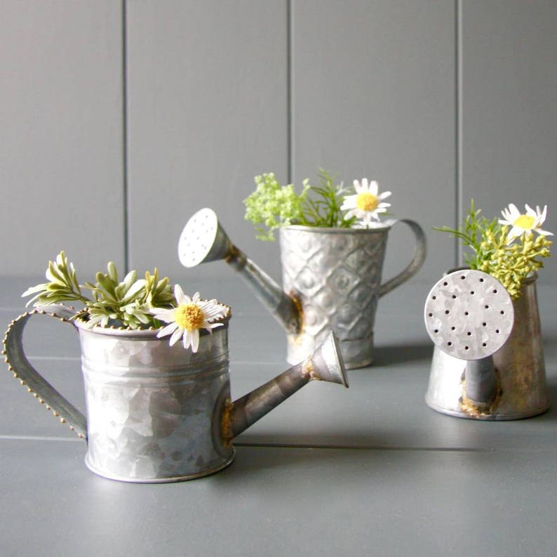 Go hooked metal watering can for house plants