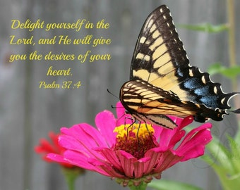 3. Zebra Swallowtail Butterfly on Pink Zinnia; Photo greeting card; Nature art print; Gift; Inspirational Scripture Psalm 37:4