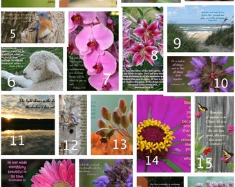Pick any 8 Photo Greeting Cards; Nature print; Inspirational; Scripture
