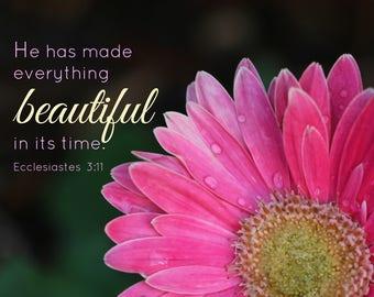16. Pink Gerbera Daisy; Photo greeting card; Nature art print; Gift; Inspirational Scripture Ecclesiastes 3:11