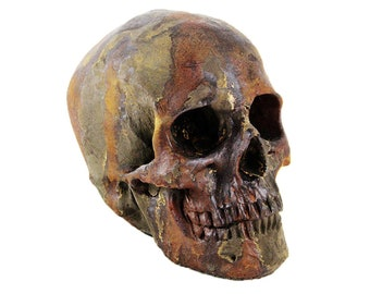 f5bdddf3447 Skull Head Statue Garden Cement Figurine Cast Stone Skull Skelletor  Sculpture