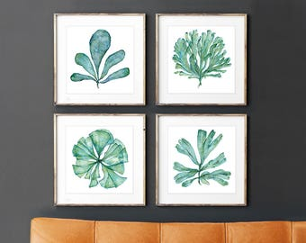 Superieur Square Art Print Set Of 4 Sea Fan Coral Watercolor Paintings, Matching  Pictures Of Botanical Watercolor Artwork, Bathroom Wall Art