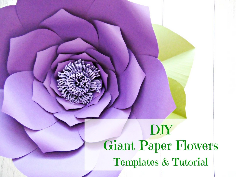 Giant Paper Flower Templates Tutorials Flower Wall Flower Templates Paper Flower Backdrop
