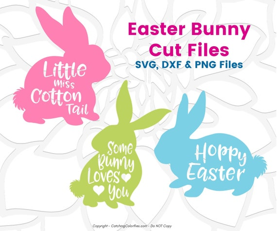 Easter Bunny Svg Cut Files Hoppy Easter Svg Little Miss Cotton Tail Some Bunny Loves You By Catching Colorflies Catch My Party
