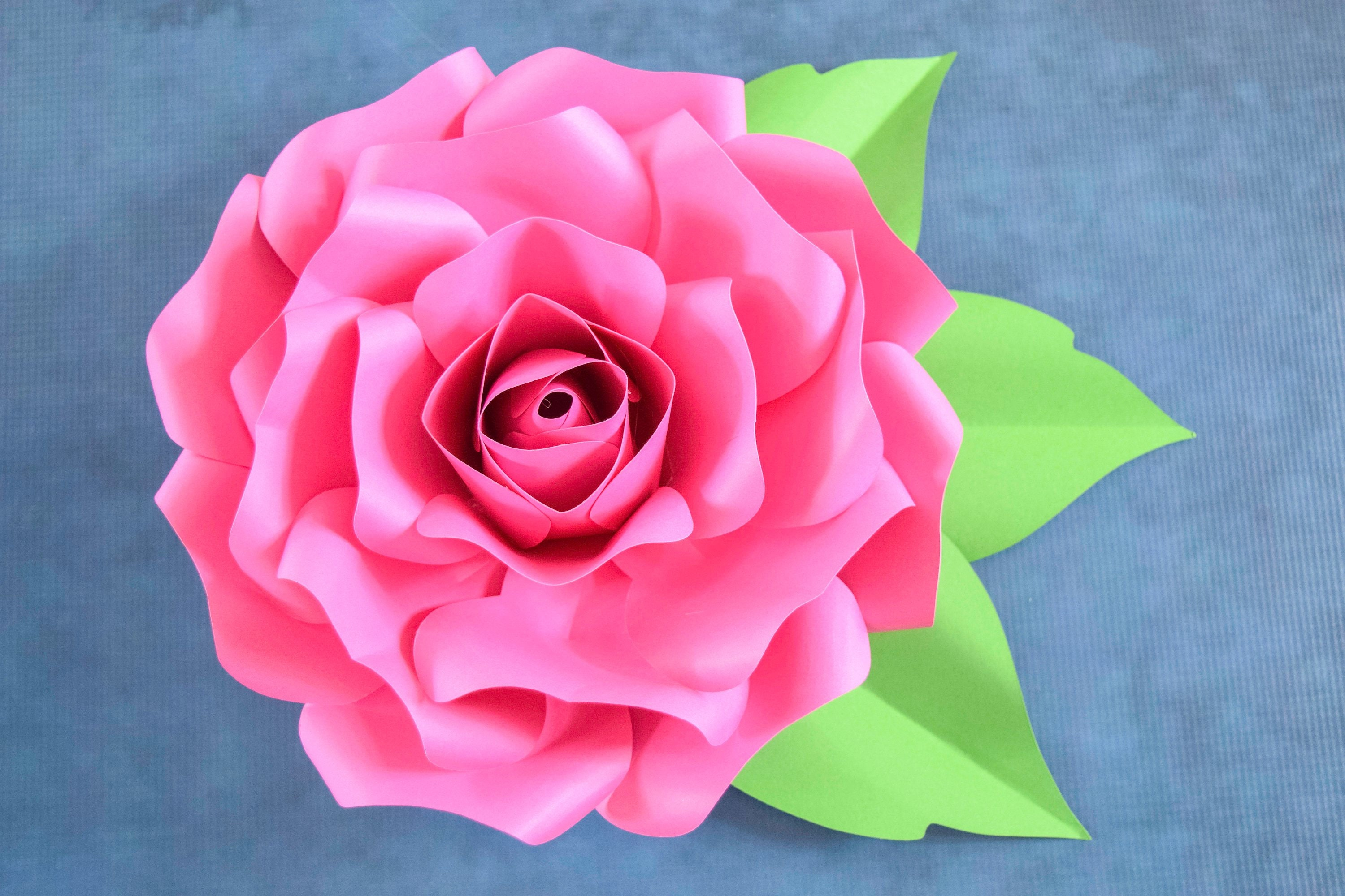 Paper Roses Paper Flower Svg Giant Paper Roses Large Paper Flowers Flower Templates Svg Cut Files Rose Templates Catching Colorflies