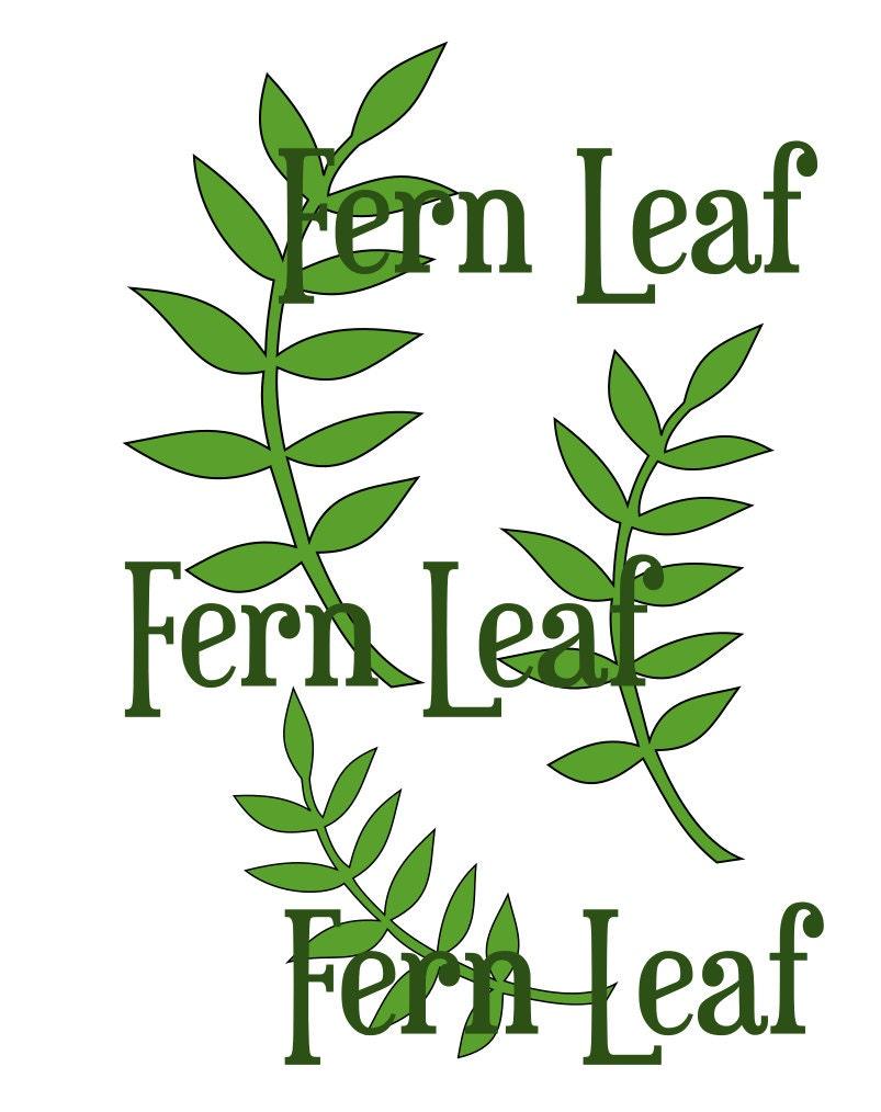 fern leaf svg cut file leaf template paper flower
