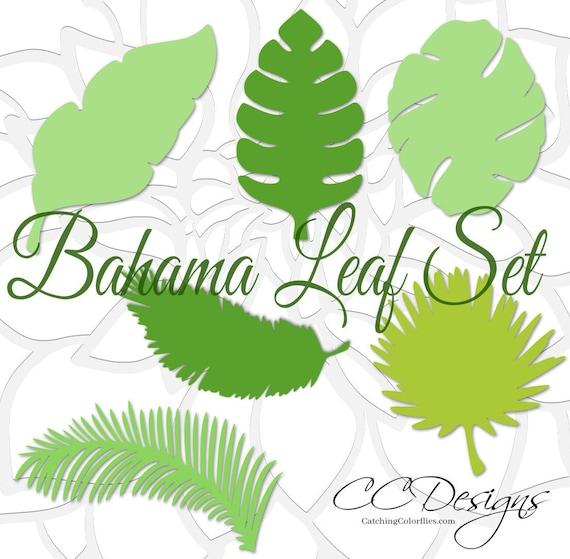 Large Paper Leaf Templates Tropical Leaf SVG Cut Files Large | Etsy