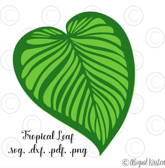 Large Tropical Palm Leaf Svg Cut Files Leafy Cut Files Giant Etsy