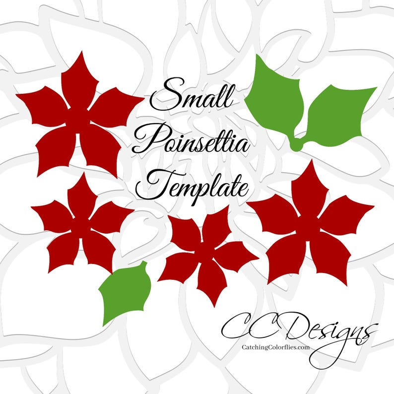 graphic relating to Printable Poinsettia Template identified as Paper Poinsettia Bouquets, Very simple Printable PDF Poinsettia Flower Templates and total movie guidebook, Xmas Bouquets