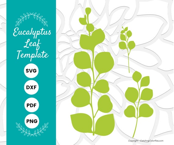 Eucalyptus Paper Leaf Template Eucalyptus Vine Svg Eucalyptus Svg Dxf Cut Files And Printable Pdf Instant Download By Catching Colorflies Catch My Party