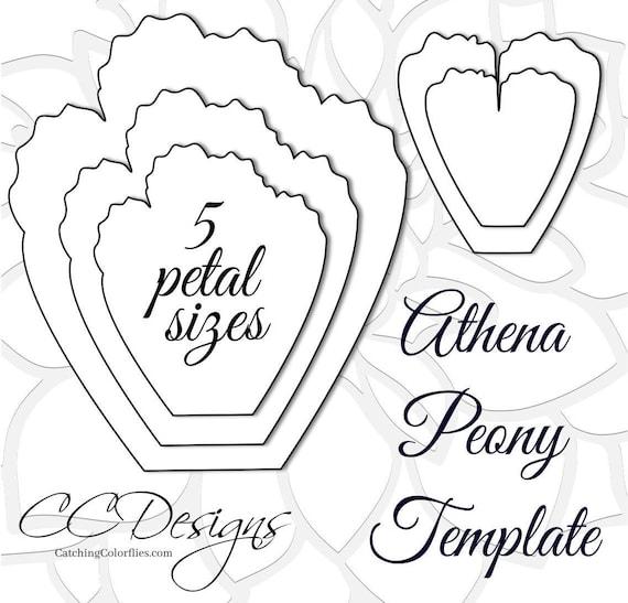 giant paper peonies printable pdf flower templates peony pdf