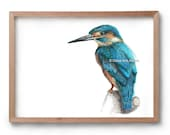 Kingfisher - Blue Bird - Fineliner - Pen & ink - Artist Print -Artwork - Drawing - Gift for Her - Gift for Him - Mothers Day Gift