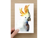 Card  - Cockatoo - Bird Watercolour Painting - Celebration - Greeting Cards - Birthday Card