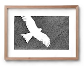 Absence of an Eagle - Bird Drawing - Flying Bird - Artwork - Drawing - Print - Gift for Him - Black and white wall art