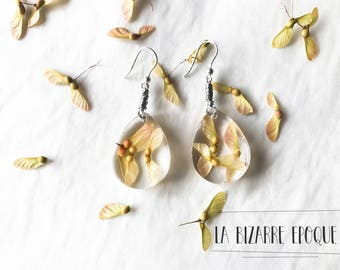 Dangle resin earrings with maple seeds  - natural jewelry - gift for nature lover