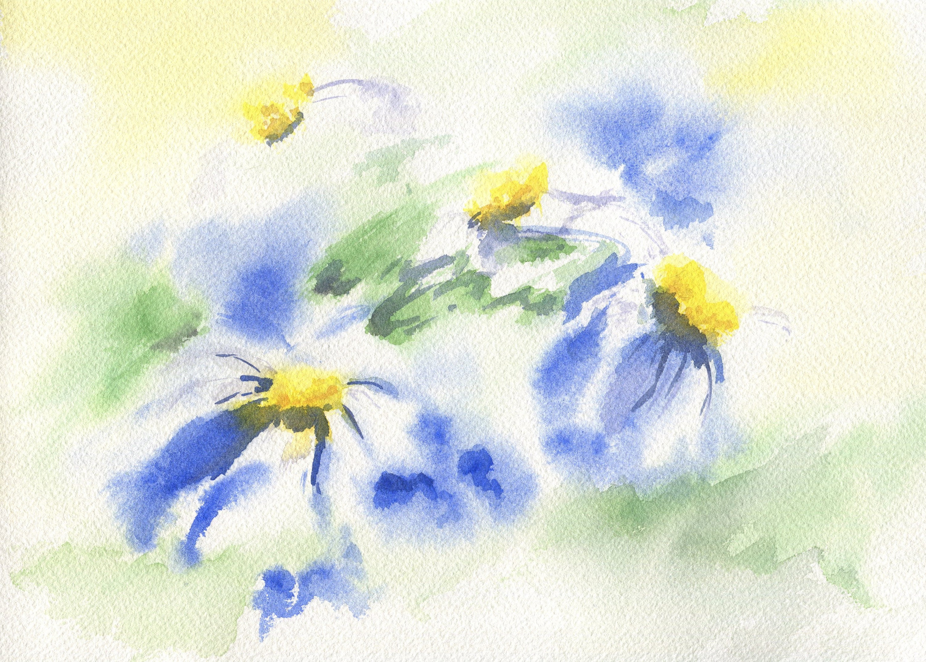 Daisies Original Watercolor Paintings Floral Watercolor Etsy
