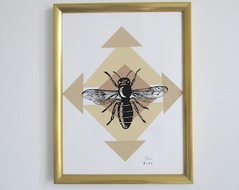Displays 2 bee