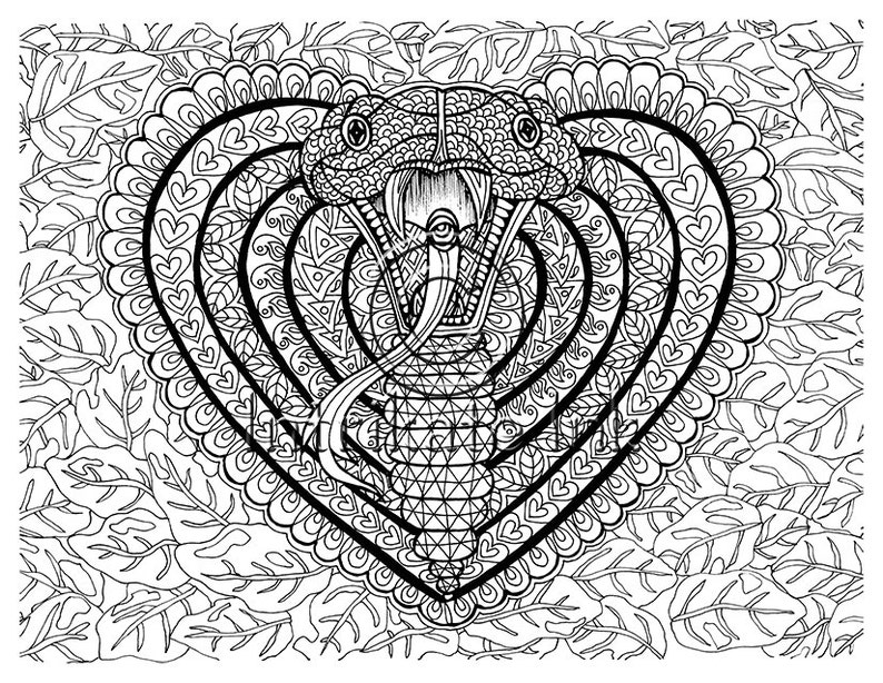 Cobra Coloring Page Animal Coloring Snake Wild Detailed Etsy