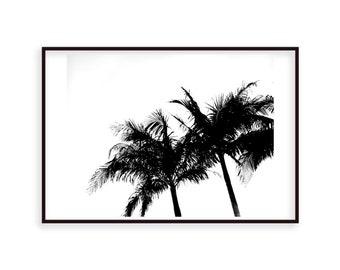 Palm Trees 1 Digital Print