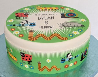 Bugs/insects personalised boys cake topper fondant/icing