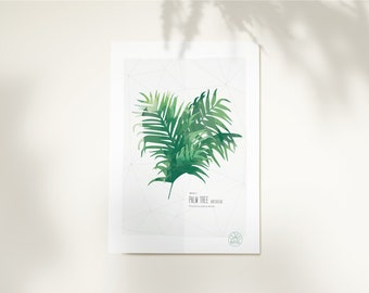 Poster 8x12 inch or 17x24 inch • Palm Tree • Poster High Quality InsidePapers • Minimalist illustration • Tropical Vegetal